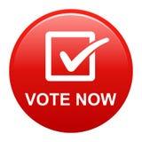 Abstimmung knöpfen jetzt stock abbildung
