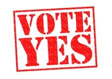 Abstimmung YES lizenzfreie abbildung