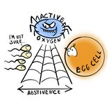 Abstinence and fertility. Egg cell.  stock illustration