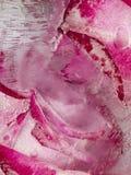 Abstração brilhante vertical com as flores no gelo Fotos de Stock