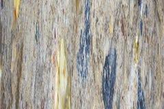 A abstração colorida pode ser usada como o fundo ilustração do vetor