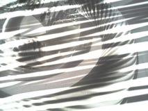 Abstração de vidro no fundo branco Imagens de Stock Royalty Free