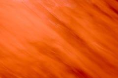 Abstracção Foto de Stock
