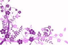 Abstracção do Lilac, teste padrão Fotografia de Stock