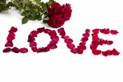 Abstracción, amor de la inscripción de los pétalos de rosas y un ramo Imagen de archivo