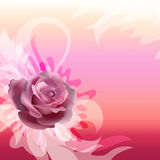 Abstracción con una rosa Fotografía de archivo