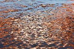 Abstracción del agua Foto de archivo