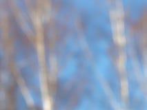 Abstracción del azul de la primavera Imagen de archivo libre de regalías