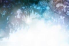 Abstrack träbakgrund Arkivfoto