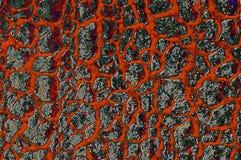 abstracktyttersida Royaltyfria Bilder