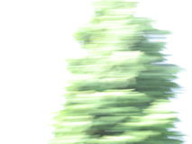 Abstract. Photo of a fir, style: motion blur stock photography