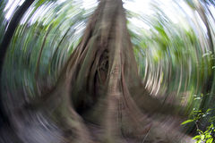 Abstract Stock Photography