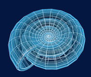 Abstract 3d spiral shell from a blue grid. Objects over dark blue Stock Illustration