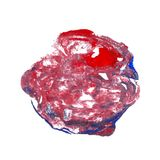 Abstract acrylic paint monotyped spot. Red blue bright colors. Vector illustration isolated on white background Royalty Free Stock Photos