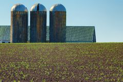 Abstract Agricultural Buildings and Field Royalty Free Stock Photography