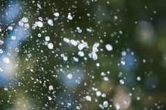 Water Droplets. Abstract of airborne water droplets with lots of depth of field (DOF Stock Photos