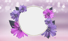 Abstract Anemone Flower Realistic Vector Frame Background Royalty Free Stock Images
