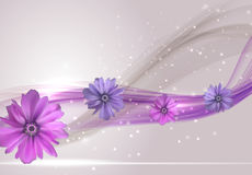 Abstract Anemone Flower Realistic Vector Frame Background Stock Photos