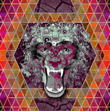 Abstract animal face. Abstract animal  wolf face background Stock Photo