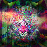 Abstract animal face. Abstract animal wolf face background Stock Illustration