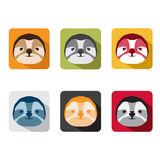 Abstract animal sloth flat design vector icons. Set royalty free illustration