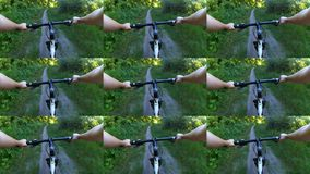 Abstract animation wall. Person cycling on bicycle ride green forest. On sunny day. Biking on path in forest. Point of view pov mtb gopro action camera stock footage