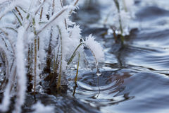 Abstract art. Frosty hays and the water surface. Cold morning. Royalty Free Stock Images