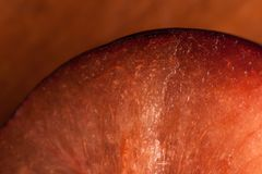 Abstract and art plum slice detail. Macro shooting background Stock Photo