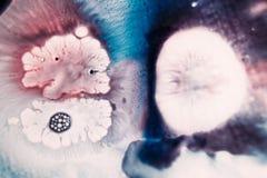 Abstract artistiek beeld van kleurrijke plons Stock Afbeelding