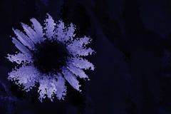 Abstract Artistiek Fower-Blauw Als achtergrond Royalty-vrije Stock Afbeeldingen