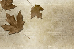 Abstract autumn background. With grunge detail Royalty Free Illustration