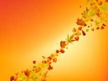 Abstract autumn background. EPS 8  file included Royalty Free Stock Images