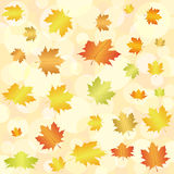 Abstract autumn background. Abstract autumn leaf background. Vector illustration Royalty Free Stock Image