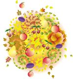 Abstract autumn background. With fruits and colorful leafs Stock Illustration