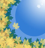 Abstract autumn background. Leafs and sky royalty free illustration