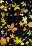 Abstract Autumn Background. Stock Afbeelding