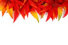 Abstract, Autumn, Background Royalty Free Stock Photo