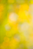 Abstract autumn background bokeh blurred stock photo