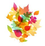 Abstract autumn background. Bright abstract autumn background with falling oak and maple leaves Royalty Free Stock Image
