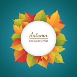 Abstract autumn background with bright leaves. Frame of autumn foliage Vector Illustration
