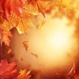 Abstract autumn background. With falling leaves stock photo