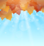 Abstract Autumn Background with Leaves. Illustration Abstract Autumn Background with Leaves and Sunny Rays - Vector Royalty Free Stock Images