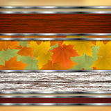 Abstract autumn background with maple leaves. Vector eps10 illustration Stock Photography