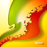 Abstract autumn background. With maple leaves Stock Photos