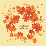 Abstract autumn yellow background with maple leaves. Abstract autumn background with maple leaves, circling in leaf fall royalty free illustration