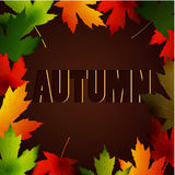 Abstract Autumn background with maple leaves. And autumn word Royalty Free Stock Photos