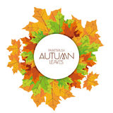 Abstract Autumn Background Pattern Template Stock Illustratie