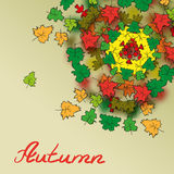 Abstract autumn background with patterns of leaves with space Royalty Free Stock Photos