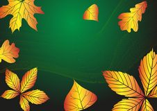 Abstract Autumn Background. Vector Illustration. Eps 10 Stock Photography