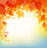 Abstract autumn background. Vector abstract autumn background with orange and yellow leaves Royalty Free Stock Photo